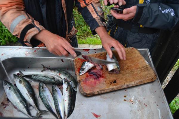 Fiske konkurrence 028