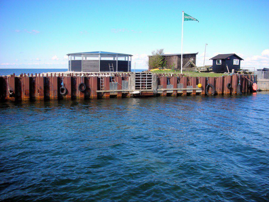 saltholm 020515 (154).JPG, svend erik, ny havn
